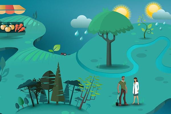 Illustrations numériques Biodiversité